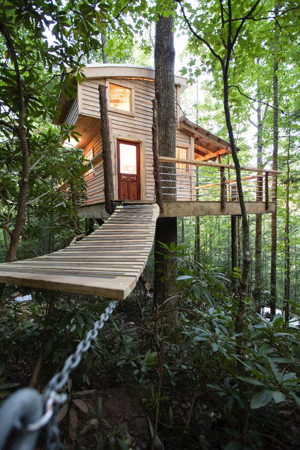 Pin By The Canopy Crew On Treehouses In 2019 Kentucky