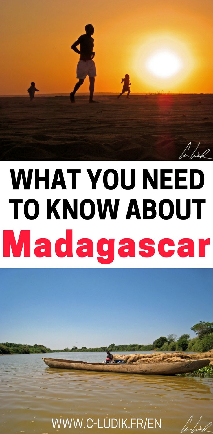 Madagascar is home to unique wildlife found nowhere else in the world! Check out what to expect in Madagascar, transportation in Madagascar, things to do in Madagascar and much more. This Madagascar travel guide will help you plan your trip so make sure you save it to your travel board.