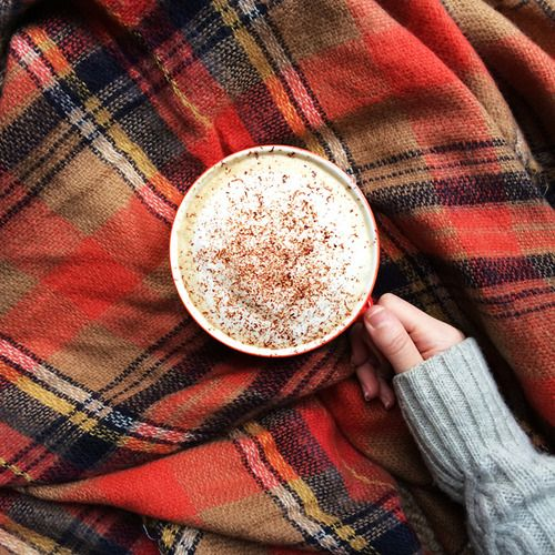 Huge mug of hot chocolate on a plaid blanket. Pair it with a book by a large window and I would be in heaven.