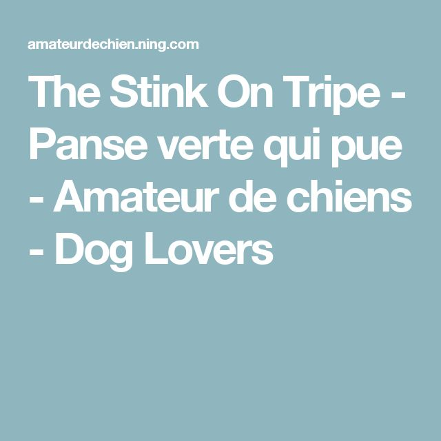 The Stink On Tripe - Panse verte qui pue - Amateur de chiens - Dog Lovers