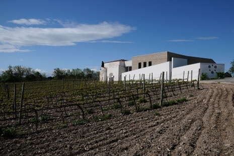 Alberto Longo's making wines fit to gulp. The gregarious reds of Puglia