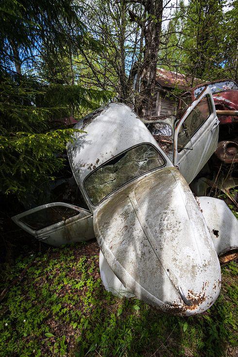 un vieux cimetiere de voitures en suede 8   Un vieux cimetière de voitures en Suède   voiture vintage Suède seconde guerre mondiale photo mo...