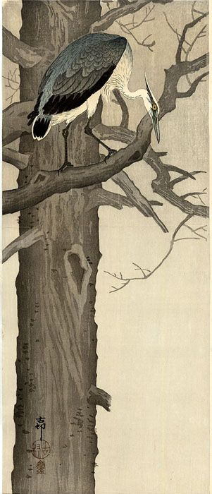 hanga gallery . . . torii gallery: Grey Heron on Branch by Ohara Koson