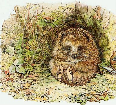 "pagewoman: "" Old Mr. Prickly Pin later renamed Mr. Pricklepin by Beatrix Potter 1905 """