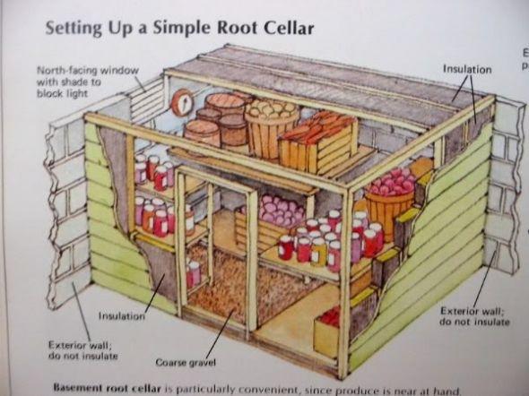 root cellar organization