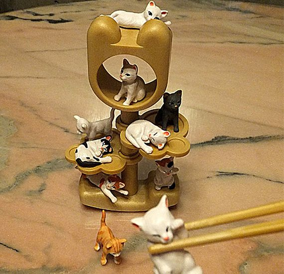 Tiny Cats Chopstick Game Fun Time Go! #IncredibleThings