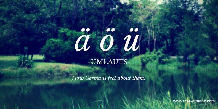How Germans feel about German umlauts (ä,ö,ü)