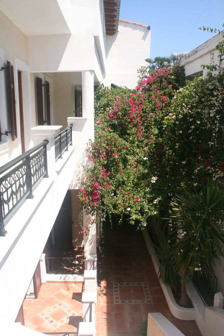 Garden between hotel entrance and the rooms