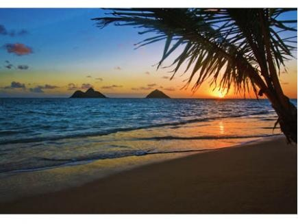 Hawaii Men seeking for Women m4w