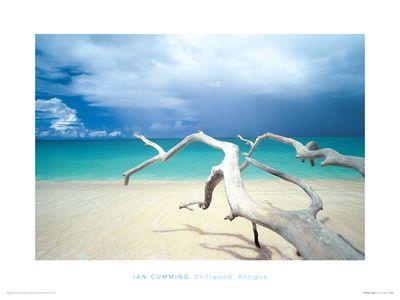 Coastal Prints, Prints and Posters at Art.com