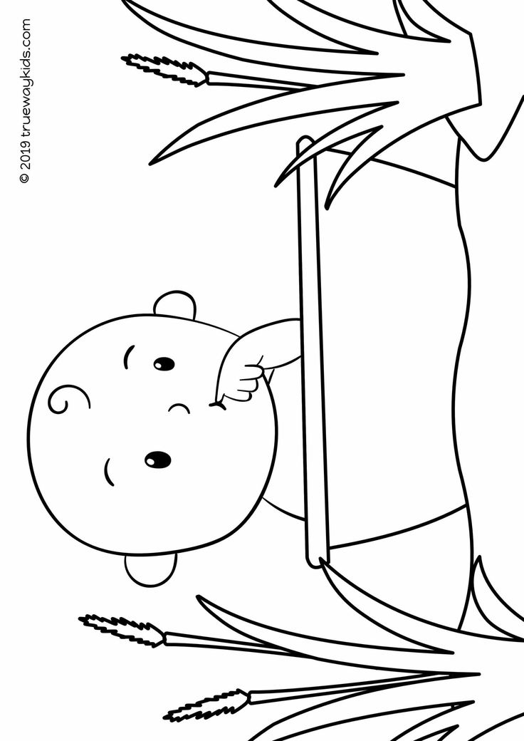 Baby Moses coloring page Bible lesson for under 5s