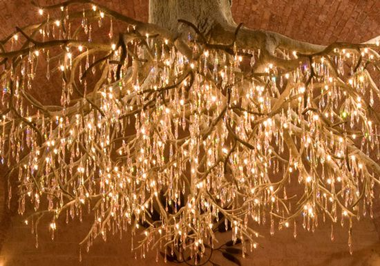 the Hall Vineyard Chandelier at Kathryn Hall Vineyards, by David Lipski and tree lighting specialist Jonquil-Design