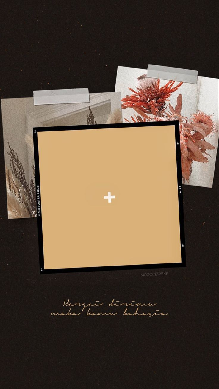 Blank Instant Photo Frame Background Transparent Png Free Image By Rawpixel Com Nunny Instagram Frame Template Instagram Photo Frame Instagram Frame