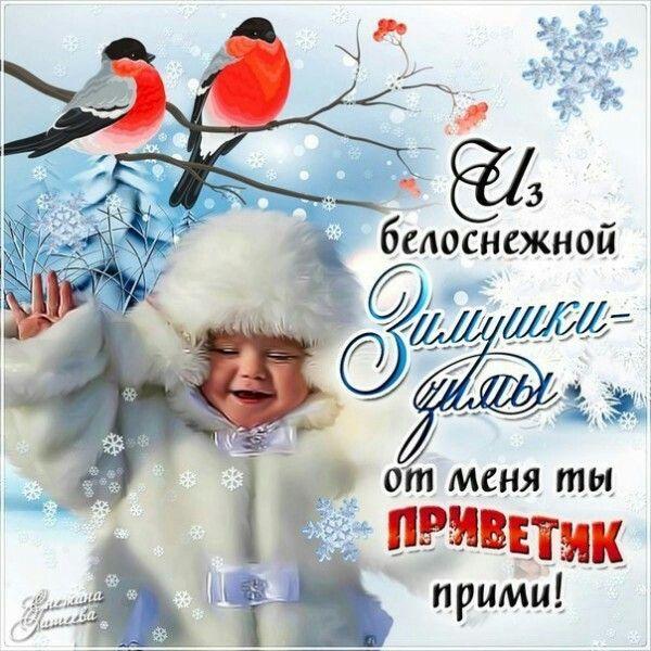что открытка тебе мой снежный привет долматов