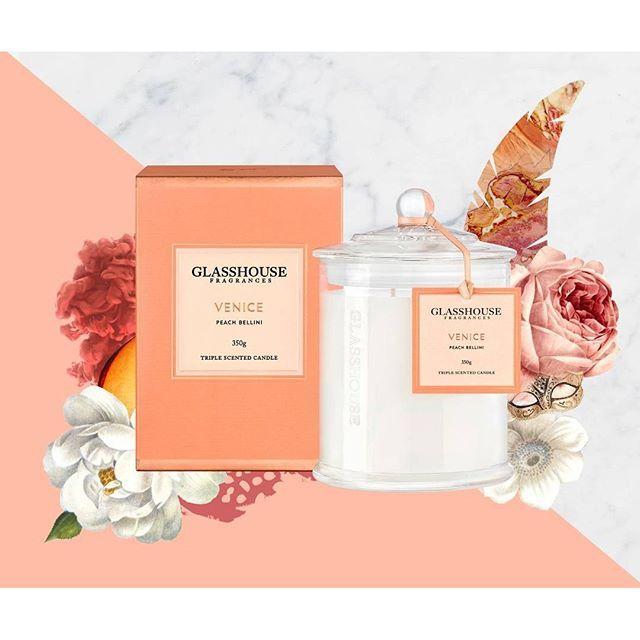 No cocktail connoisseur can fault this Peach Bellini. Available online now at glasshousefragrances.com #VeniceCandle #PeachBellini #GlasshosueFragrances