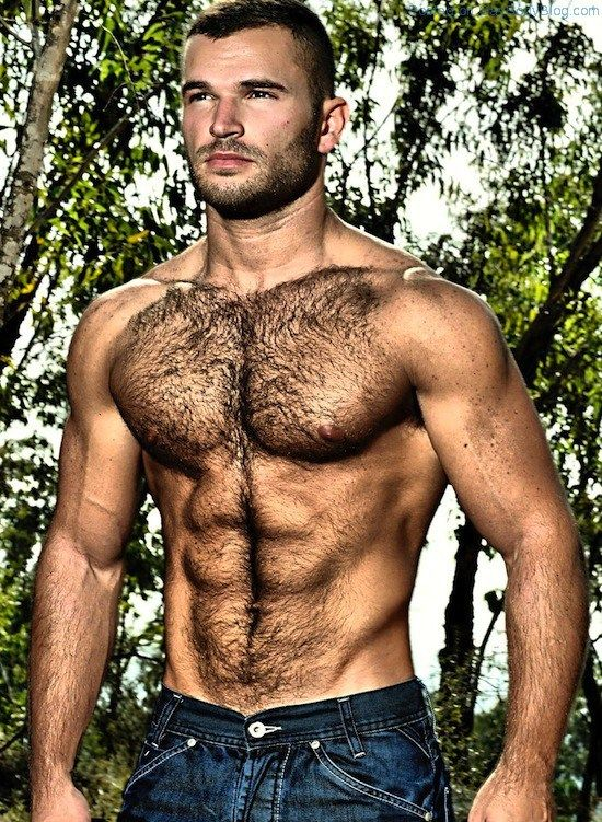 gay hairy hunk porn Tons of free Gay Hairy Hunks porn videos are waiting for you.