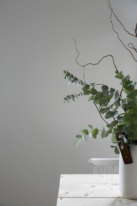 Tranebergsvägen Stockholm Eucalyptus flowers Fantastic Frank