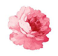 手绘花卉分层d素材-4 花卉图片PSD素材