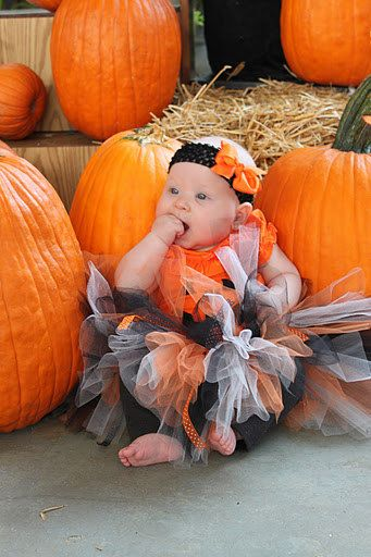 Child Halloween Fall Costume tutu, orange black white, newborn through 5t. $24.95, via Etsy.: Baby Maturn, Costumes Tutu, Fall Ideas, Halloween Tutu, Pumpkin Tutu, Fall Costumes