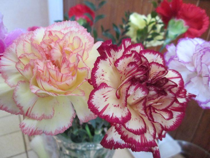 #bouquet de fleurs, #oeillets