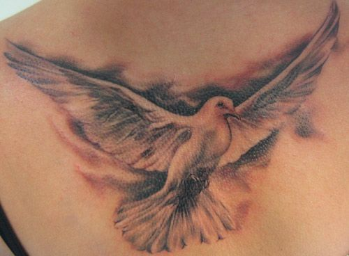 Getting this dove tattoo on my back, but without the dark shading around it.