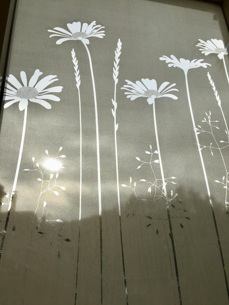Tall Daisies Window Film                      – Hannah Nunn         #glass #decor #patterned #windowfilm #frosted