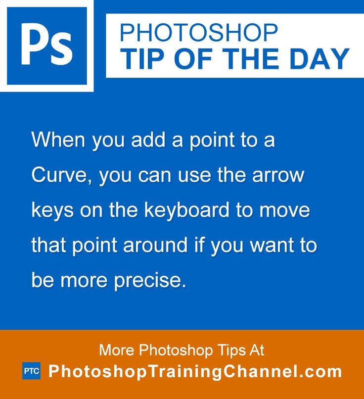 When you add a point to a Curve, you can use the arrow keys on the keyboard to move that point around if you want to be more precise.