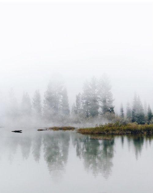 delta-breezes: @finn Perfect landscape to photograph wedding portraits