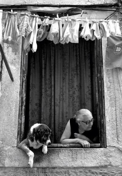 femme - fenêtre - chien  Dürüstlük size fazla arkadaş kazandırmaz,Ama her zaman iyi arkadaşlar kazandırır …John Lennon