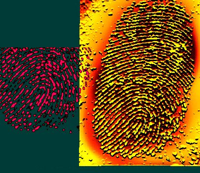 how to take a fingerprint from a crime scene