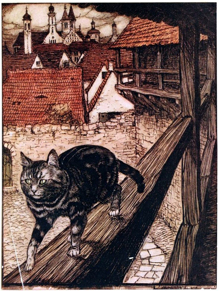 Art by Arthur Rackham (1916) from FAIRY TALES OF THE BROTHERS GRIMM. Source: http://archive.org/details/fairytalesofbrot00grim