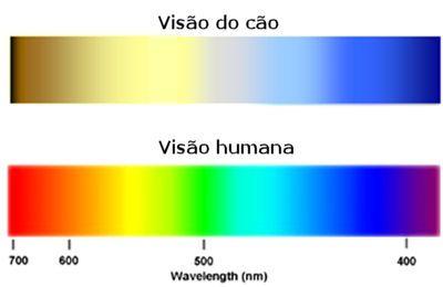 https://www.google.com.br/search?q=escala cromatica