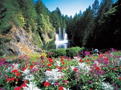 咲き誇る花とロスファウンテンと呼ばれる噴水#butchartgardens