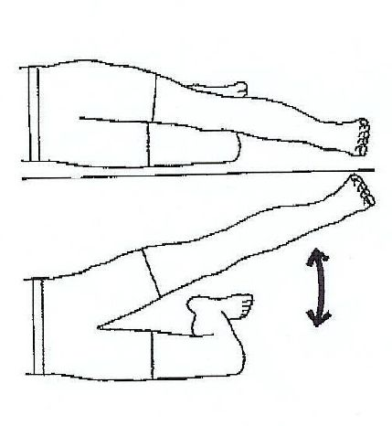 exercises after hip replacement pdf