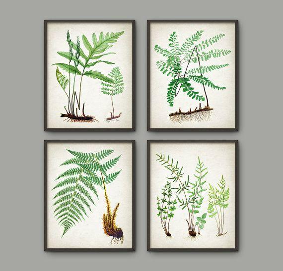 "£24 8"" x 10"" - Fern Botanical Wall Art Print Set of 4 Vintage by QuantumPrints"