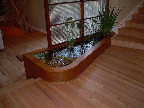 39 best indoor pond images on pinterest indoor pond for Indoor fish pond design