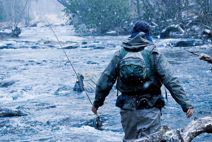 Fly Fishing: The River Knows by Christopher Puddy