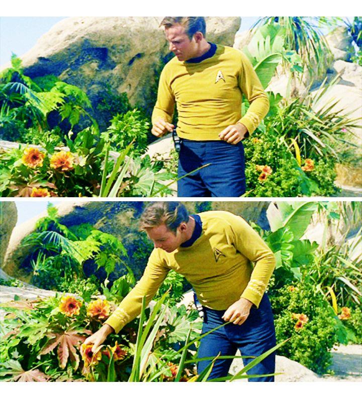 Jim Kirk/William Shatner [Found image on tumblr]                                                                                                                                                                                 Mehr