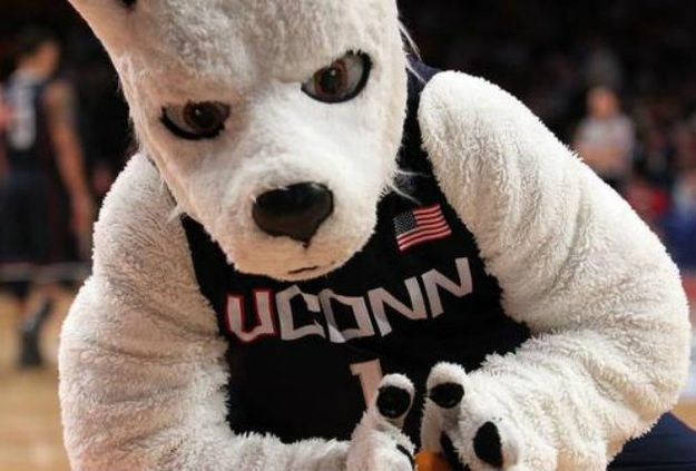 You had UConn Huskies sweats even if you had no interest in basketball. | 21 Signs You're From Connecticut
