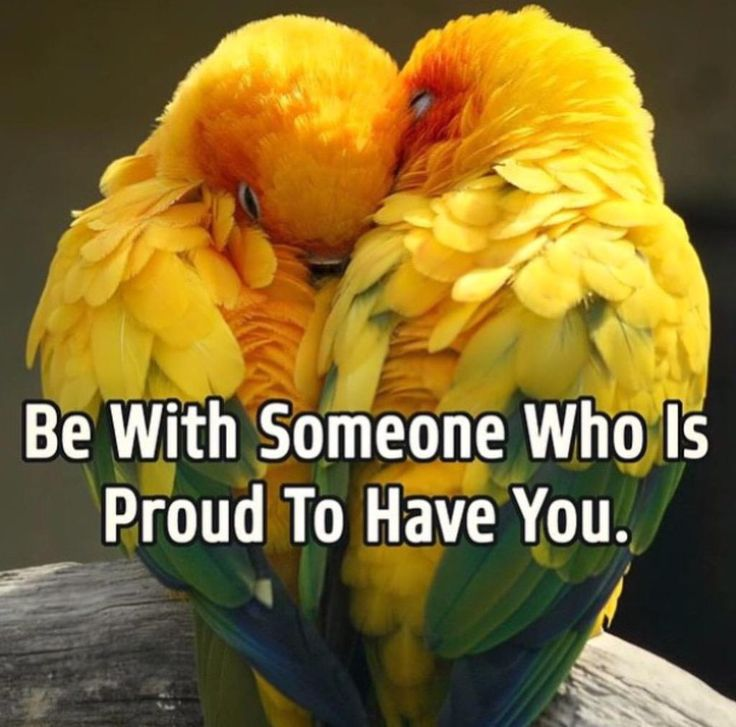 Be With Someone Who Is Proud To Have You. RT @10MillionMiler #quotes via #thinkgrowtogether