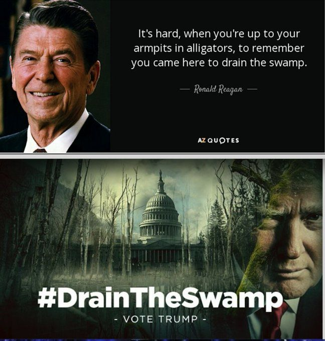 It's Hard When You're Up To Your Armpits In Alligators, To Remember You Came Here To Drain The Swamp~ Ronald Reagan