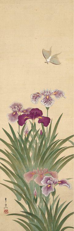 artemisdreaming: Irises and Moth Suzuki Kiitsu (鈴木其一; 1796–1858) Edo…