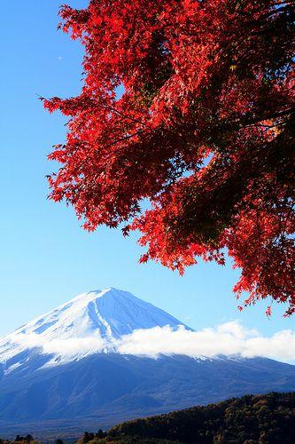 Mt. Fuji. #japan #yamanashi
