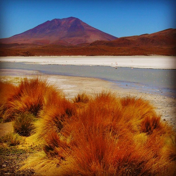Travel Scenery: 43 Best Images About Bolivia Scenery On Pinterest