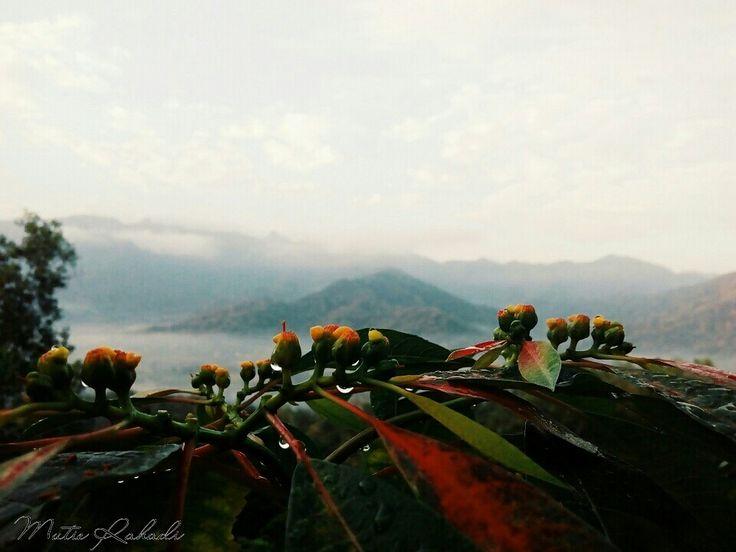 Another side of Puthuk Setumbu #puthuksetumbu #borobudur #magelang #yogyakarta #indonesia #beautifulmorning #wonderfulindonesia #beautyofindonesia #indonesiatotheworld #photobyme #takenbyme