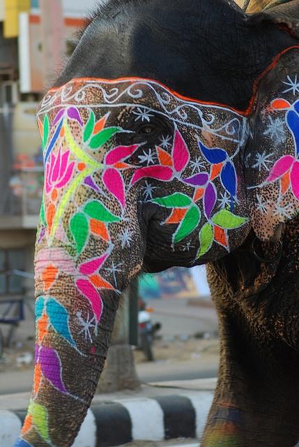 Yes! Painted elephant