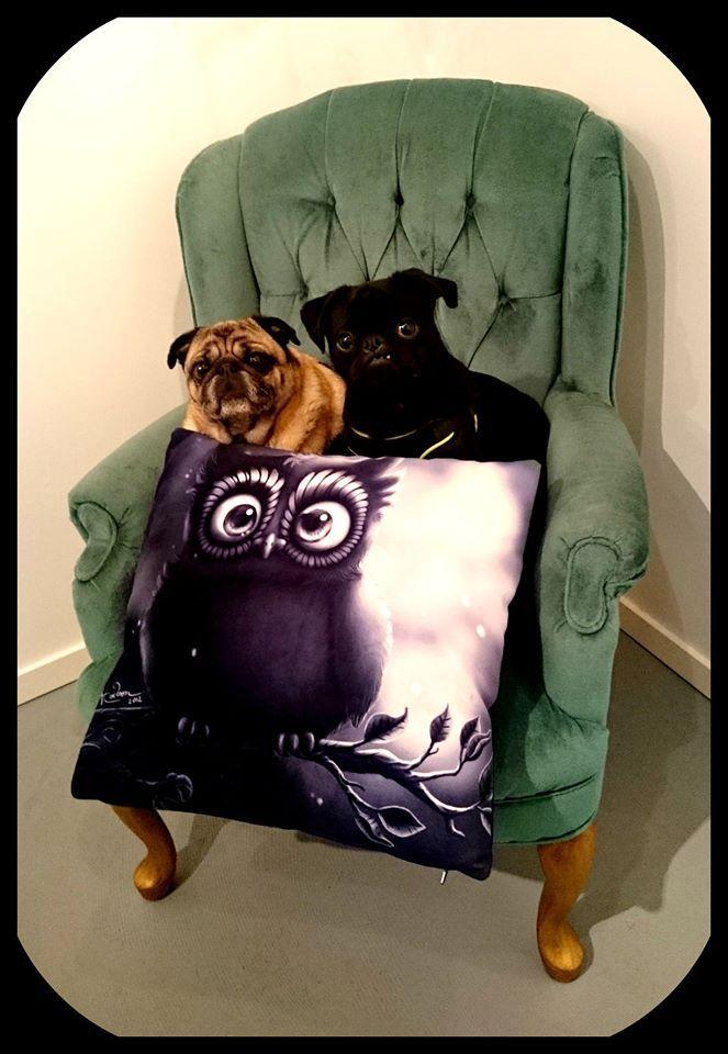 Gallery pugs!
