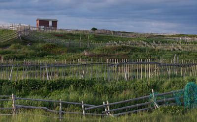 The bountiful land of Fogo Island on a crisp, spring day.