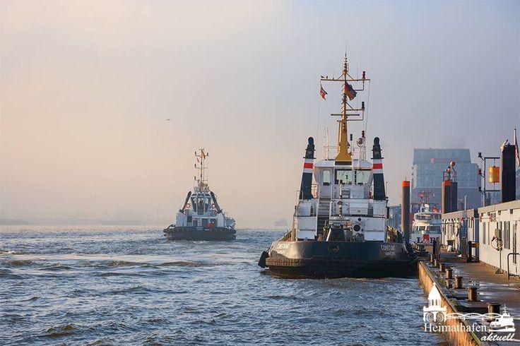 Wenn´s in Hamburg nebelt... #Hamburg #EuropaPassage #EuropaPassageHamburg #Moin #welovehh #moin #typischhamburch #hamburg #germany #hafen #harbour #fog #tug