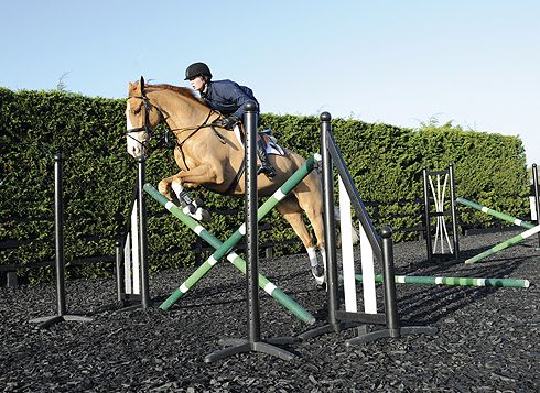 """Tina Fletcher""""Training The Young Horse""""at Foxglade Farm on 11th"""